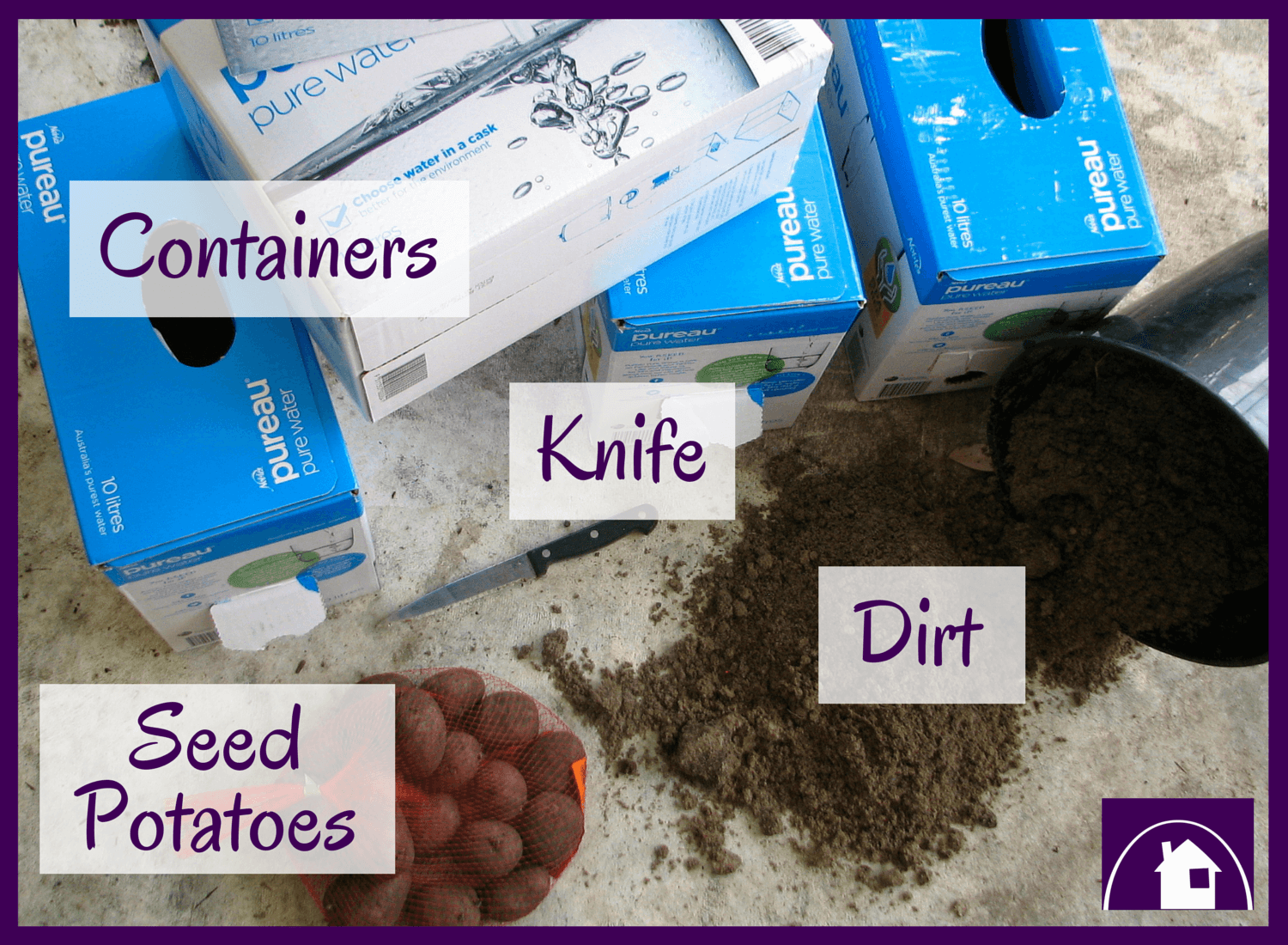 All you need to grow your own spuds, is a container some sand and a few seed potatoes
